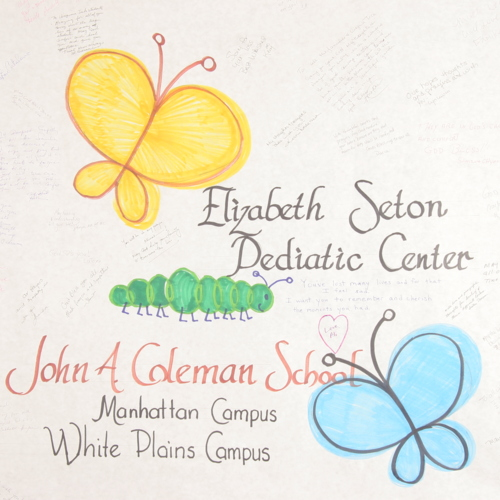Banner from Elizabeth Seton Pediatric Center; John A. Coleman School Manhattan Campus and White Plains Campus