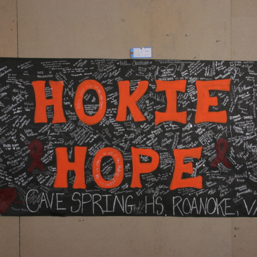 Banner from Cave Spring High School