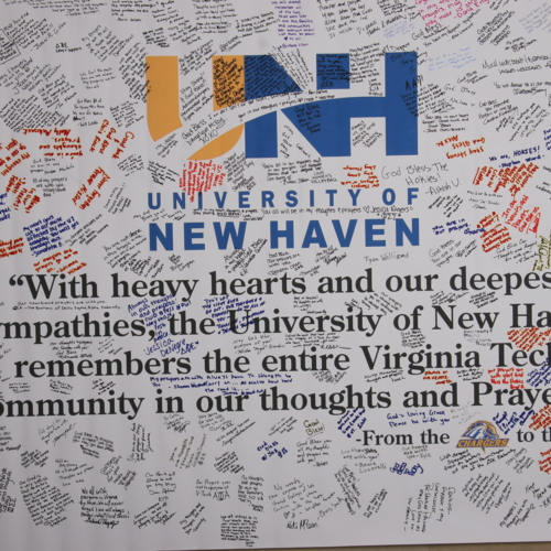 Banner from University of New Haven