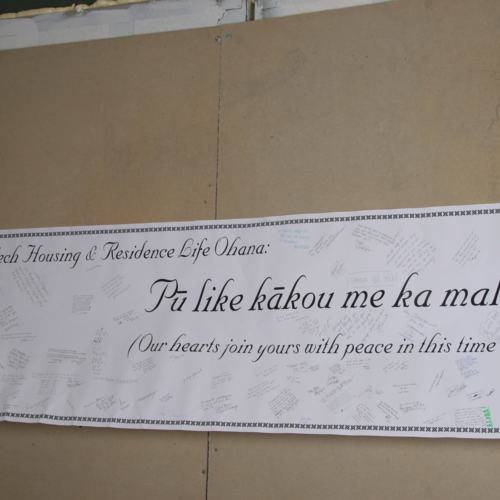 Banner from University of Hawaii