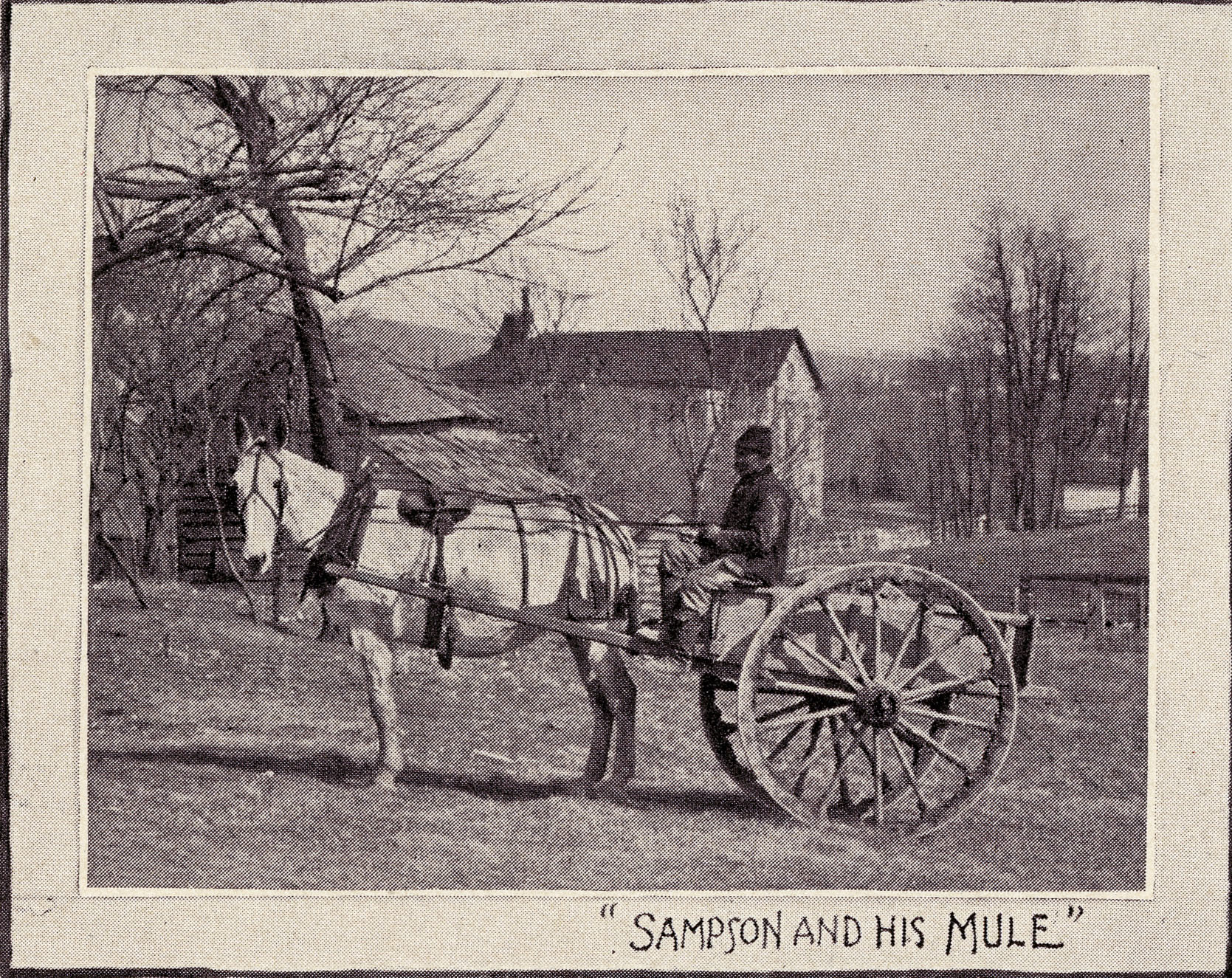 http://spec.lib.vt.edu/pickup/Omeka_upload/1899SampsonandhisMule.jpg