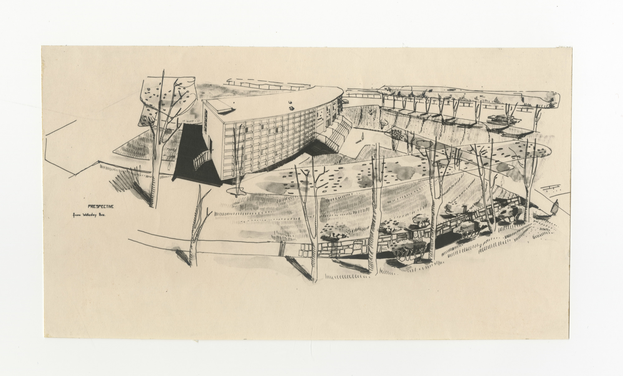 Ms1995-007_PiomelliRosaria_PerspectiveDrawing_nd_a.jpg